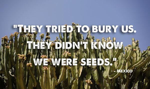 proverbio 11